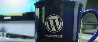 wordpress-mug_cr