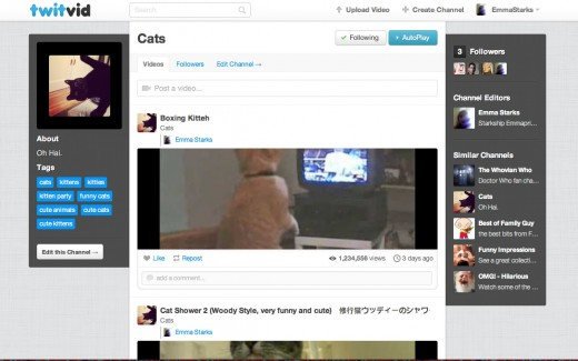 Personalized Twitvid Channel View 520x325 Twitvid launches its new social video network with 12 million users and a slick video discovery experience