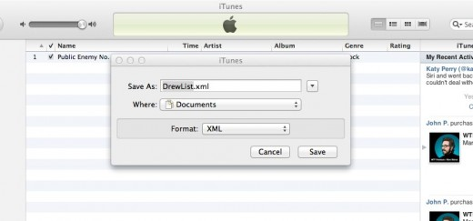iTunes 1 520x243 Add your iTunes playlists to Rdio in two easy steps with Trnsmit