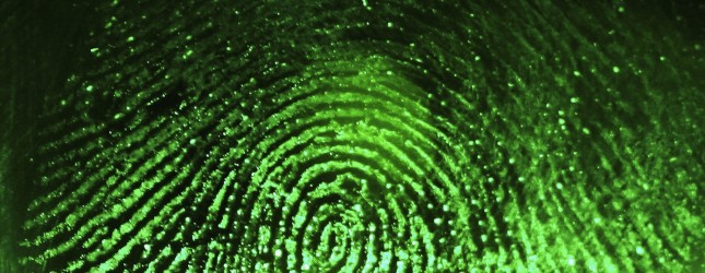 Biometrics Considered For National Identity Card