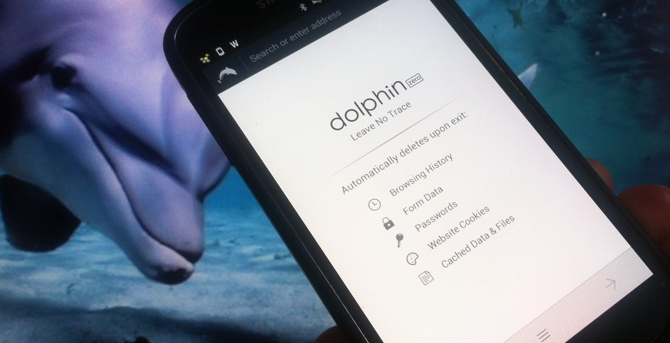 Dolphin goes ephemeral with Zero, a new privacy-focused mobile browser