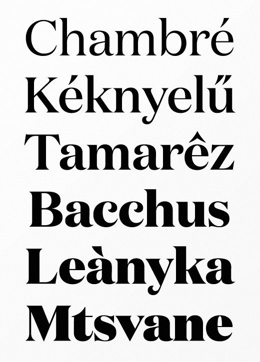 domaine The best typefaces of 2013