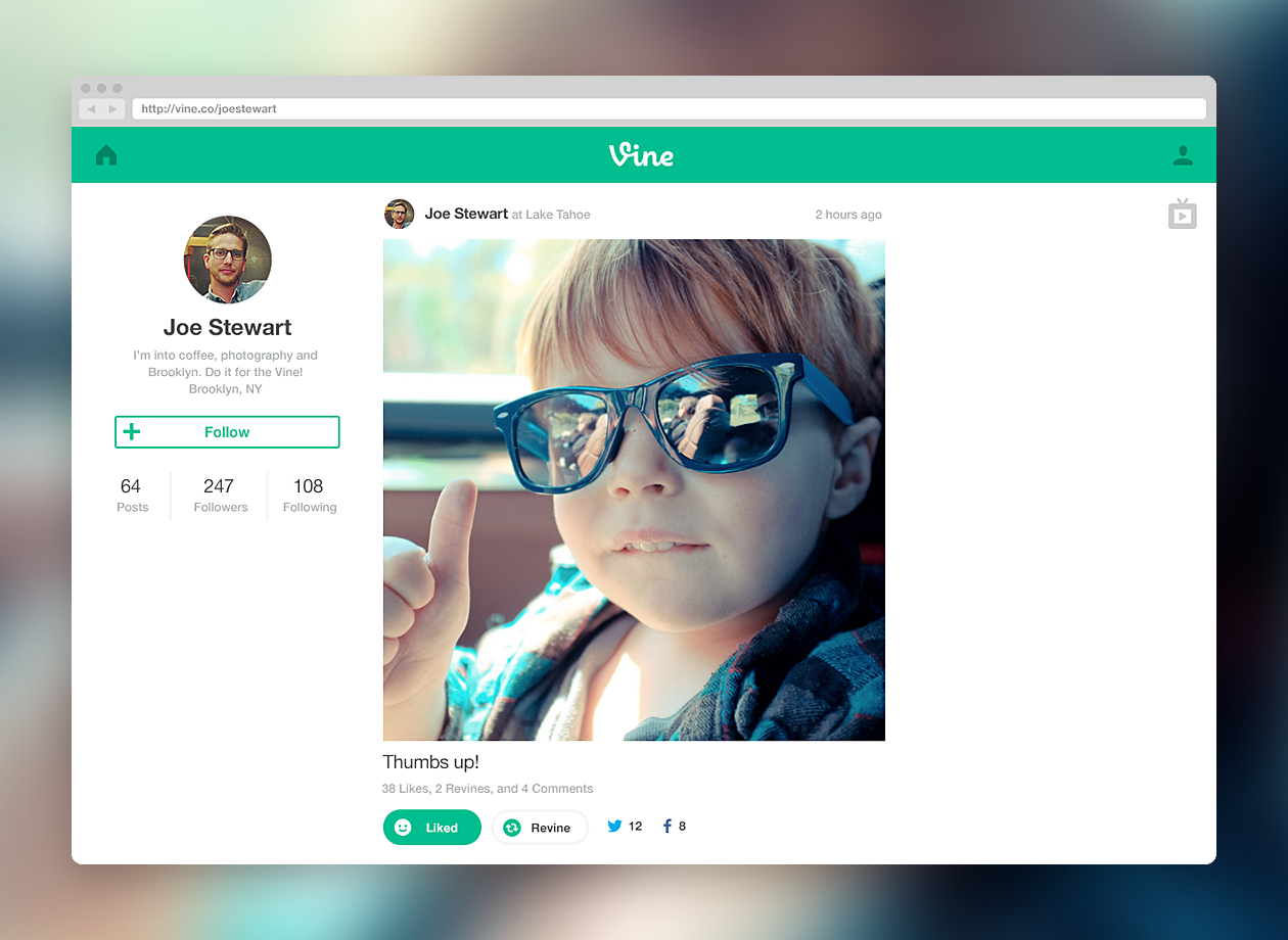 Twitter Launches Vine for the Web