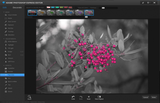 Screen Shot 2014 02 15 at 10.54.00 AM 520x335 The 9 best browser based photo editing tools available today